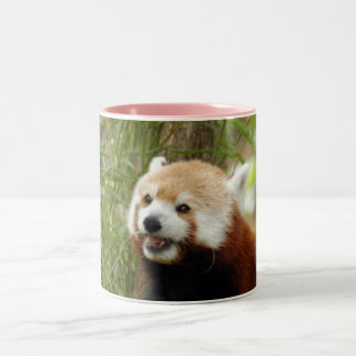 red-panda-033 Two-Tone coffee mug