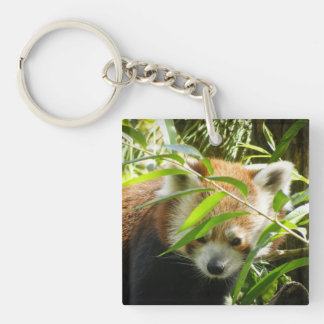 Red Panda 415P2 Double-Sided Square Acrylic Key Ring