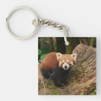 red Panda 415P Double-Sided Square Acrylic Key Ring