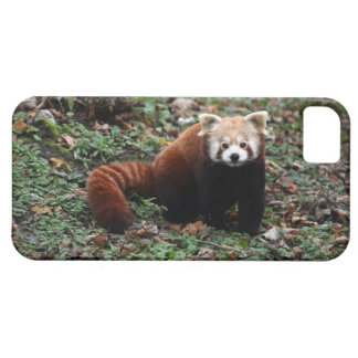 Red panda barely there iPhone 5 case