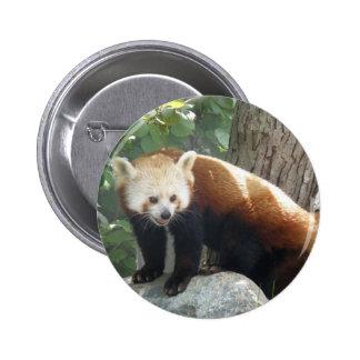 Red Panda Bear Button
