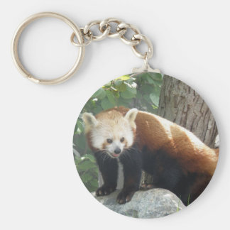Red Panda Bear Keychain