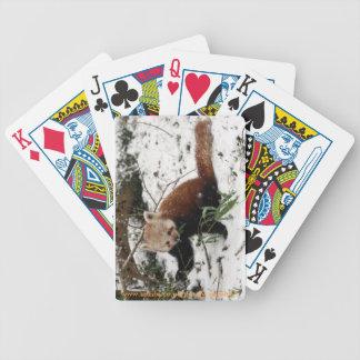Red panda bicycle playing cards