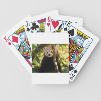 Red panda bicycle playing cards