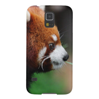Red panda case for galaxy s5