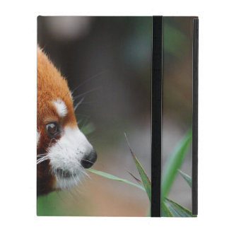 Red panda case for iPad