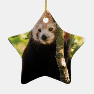 Red panda ceramic star decoration