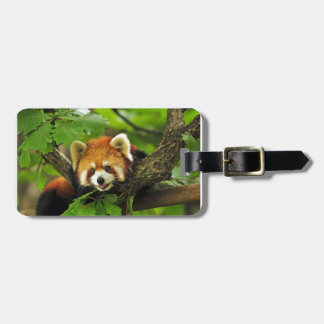 Red Panda Cub Luggage Tag
