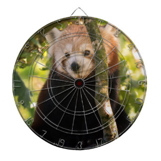 Red panda dartboard with darts