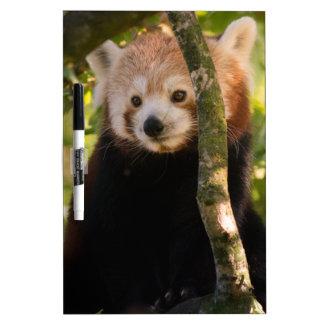 Red panda dry erase board