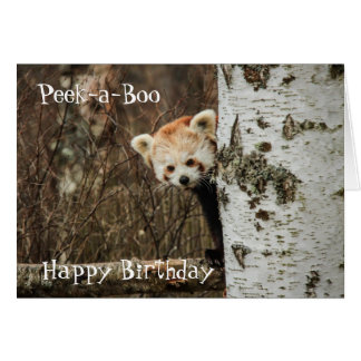 Red Panda Gifts - T-Shirts, Art, Posters & Other Gift Ideas  Zazzle