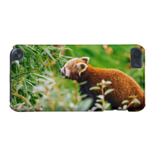 Red Panda In A Green Environment iPod Touch (5th Generation) Cover