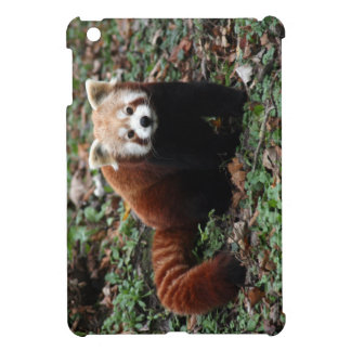 Red panda iPad mini case