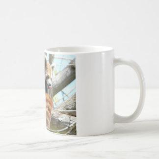 red panda lickin coffee mug
