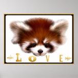 Red Panda Love Poster Art