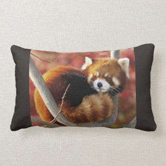 Red Panda Lumbar Cushion