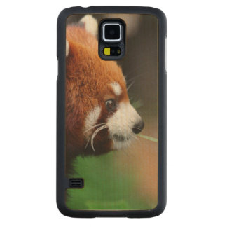 Red panda maple galaxy s5 case