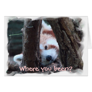"Red Panda notecard: ""Where you been? I miss you!"" Card"