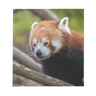Red Panda Notepad