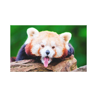 Red Panda Oil Painting Canvas