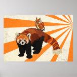 Red Panda & Owl Art Poster