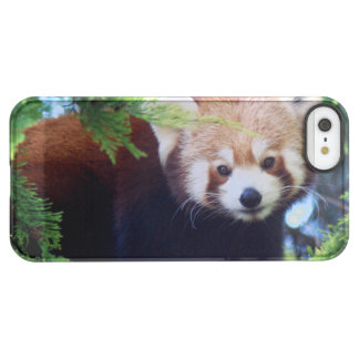Red Panda Permafrost® iPhone SE/5/5s Case