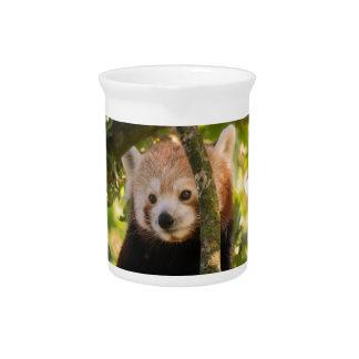 Red panda pitcher