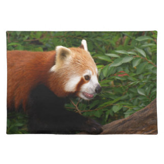 Red Panda Placemats