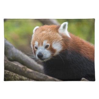 Red Panda Placemat