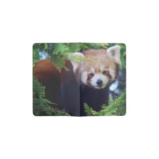 Red Panda Pocket Moleskine Notebook