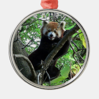 Red Panda Premium Round Ornament