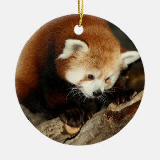 Red Panda Round Ceramic Decoration