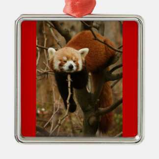 Red Panda Silver-Colored Square Decoration