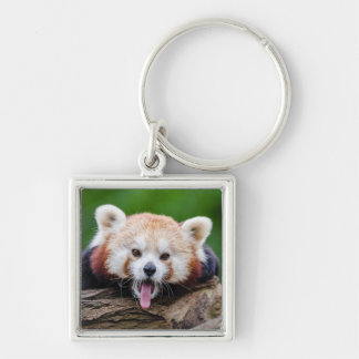 Red Panda Silver-Colored Square Key Ring
