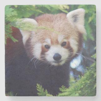 Red Panda Stone Coaster