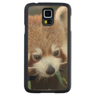 Red Panda, Taronga Zoo, Sydney, Australia Carved Maple Galaxy S5 Case