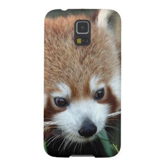 Red Panda, Taronga Zoo, Sydney, Australia Cases For Galaxy S5