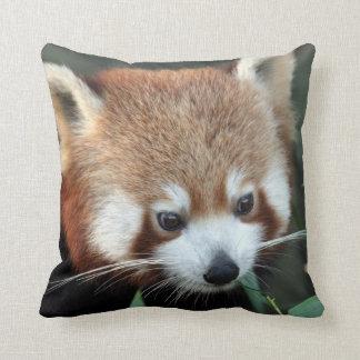 Red Panda, Taronga Zoo, Sydney, Australia Cushion