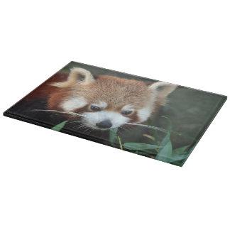 Red Panda, Taronga Zoo, Sydney, Australia Cutting Board