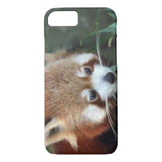 Red Panda, Taronga Zoo, Sydney, Australia iPhone 7 Case
