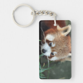 Red Panda, Taronga Zoo, Sydney, Australia Key Ring