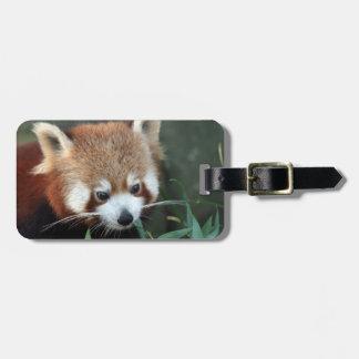 Red Panda, Taronga Zoo, Sydney, Australia Luggage Tag