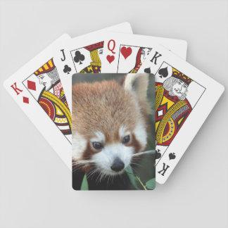 Red Panda, Taronga Zoo, Sydney, Australia Playing Cards
