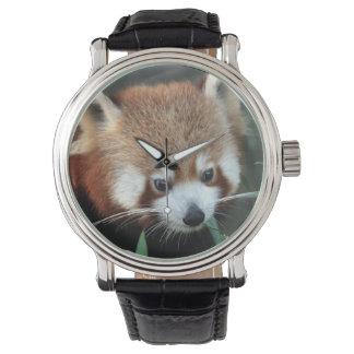 Red Panda, Taronga Zoo, Sydney, Australia Wrist Watches