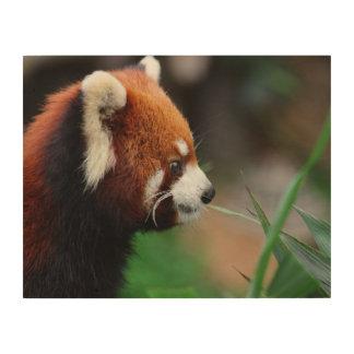 Red panda wood print