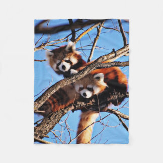 red pandas fleece blanket