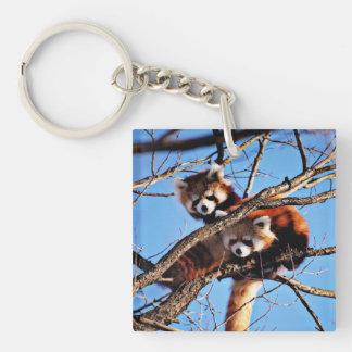 red pandas Single-Sided square acrylic key ring