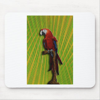 Red Parrot Palms mousepad