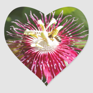 Red Passion Flower with Bee Heart Sticker