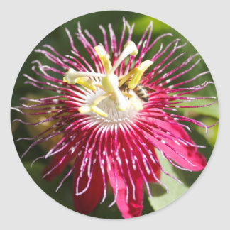 Red Passion Flower with Bee Sticker